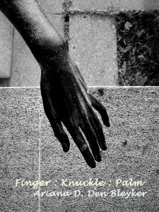 Finger_Knuckle_Palm